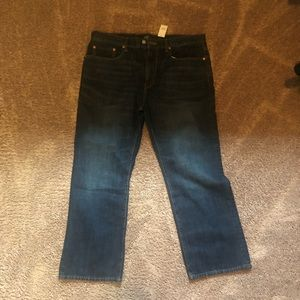 BRAND NEW Gap Jeans (Men)